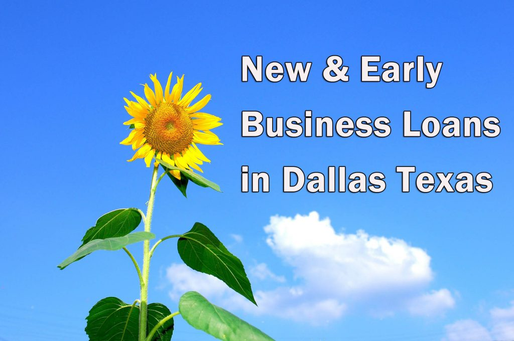 Early business loans in Dallas - Sunflower