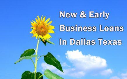 Early business loans in Dallas_Sunflower
